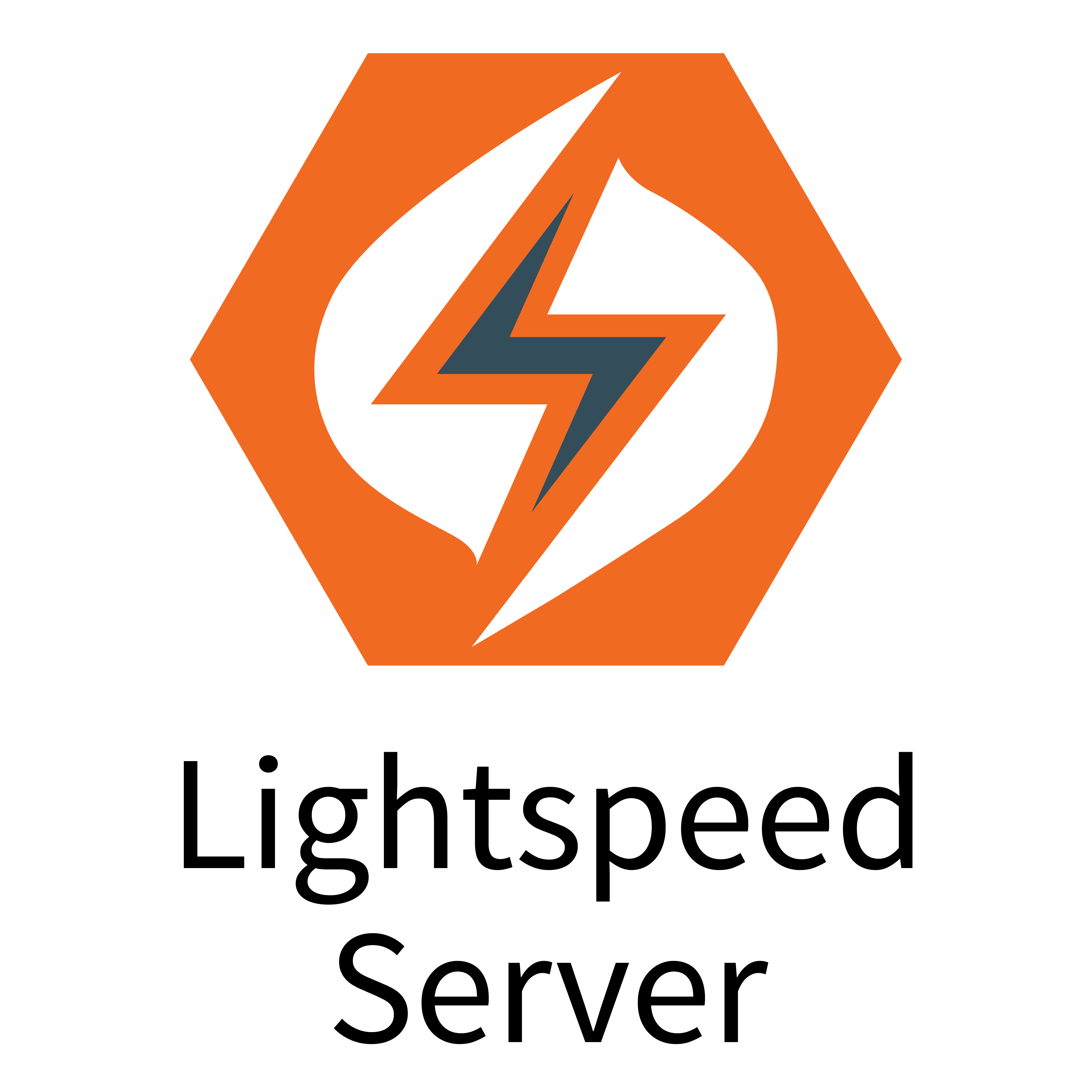 Logo-LightspeedServer